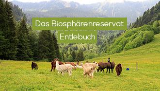 Entlebuch - Das Biosphärenreservat